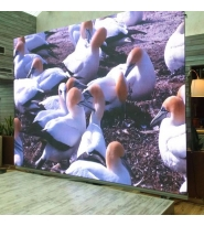 LED Screen 5.95 Outdoor